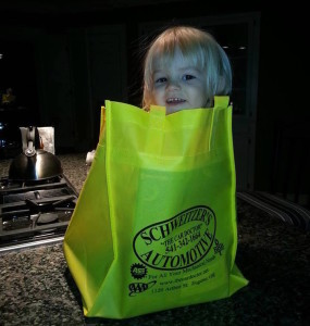 eugene-auto-repair-maintenance-schweitzer-baby-in-bag